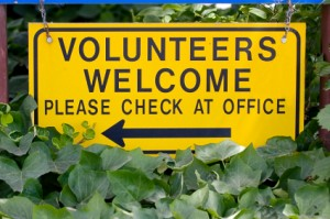 screening volunteers, background check volunteers